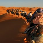 9 Days Tour Casablanca Desert